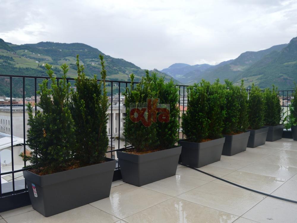 Bolzano - Viale Duca d'Aosta